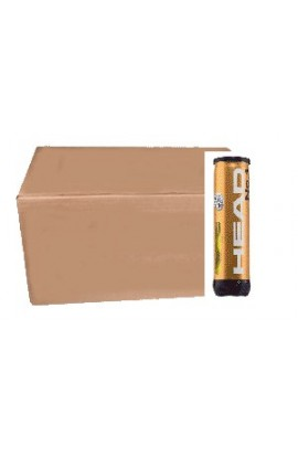 Carton de 18 Tubes Head ATP Gold